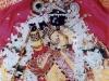 radharaman4